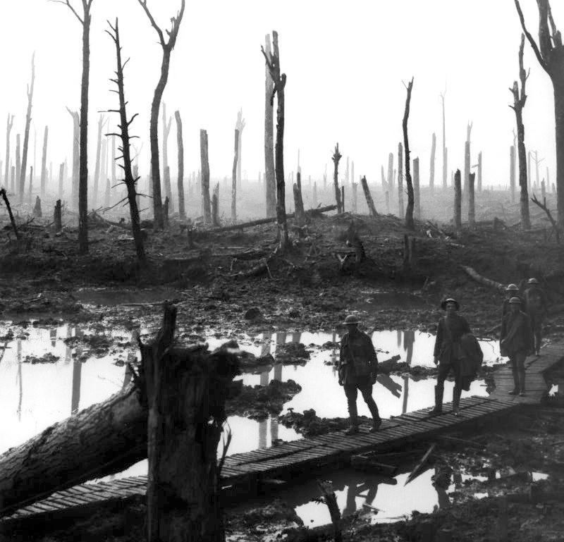 Chateau Wood Ypres 1917